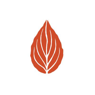 logo stevenson blaadje vlam - Mindfulness Intensive